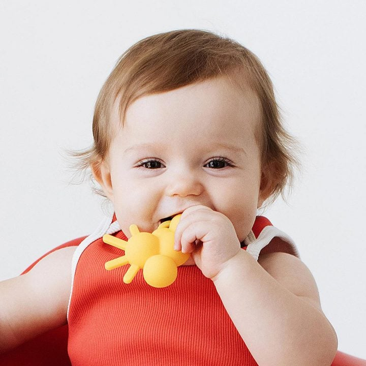 the chew teething toy